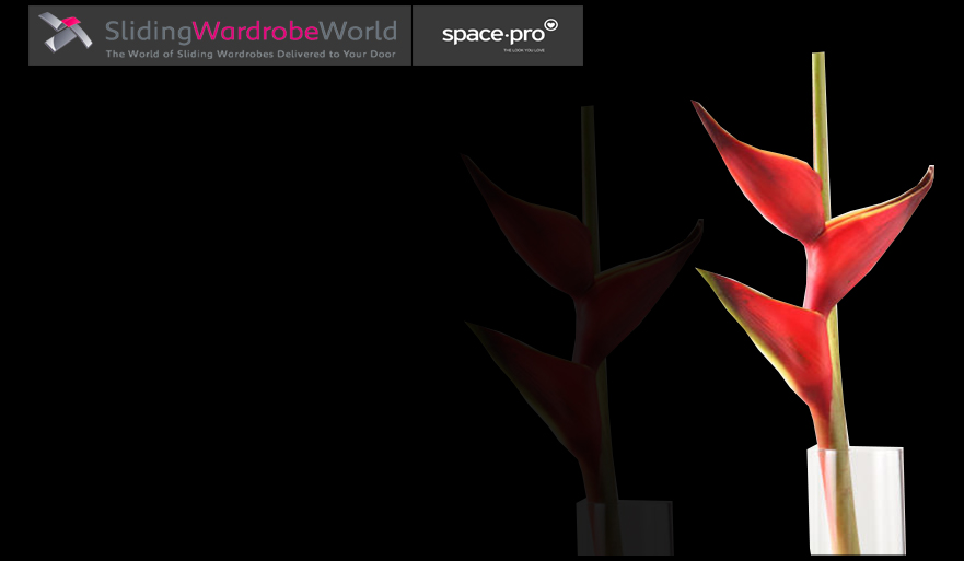 Black Glass  - Sliding Wardrobe World™ SpacePro™