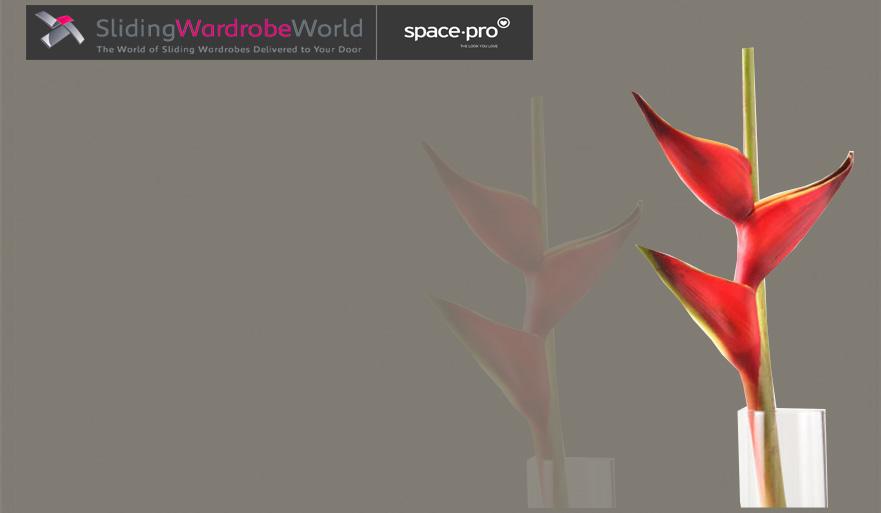 Cappuccino Glass - Sliding Wardrobe World™ SpacePro™