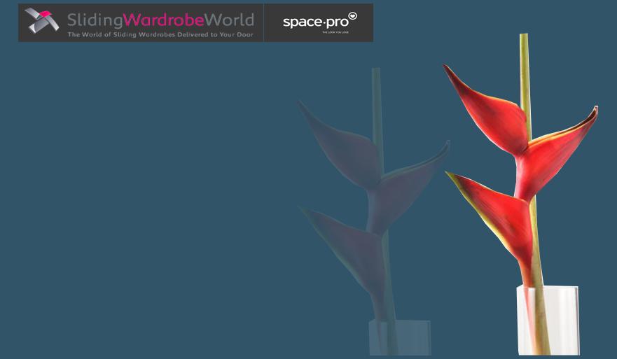 Dark Blue Glass - Sliding Wardrobe World™ SpacePro™